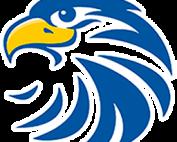 stylized hawk head