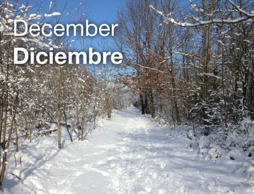 Important December Date/ Fechas Importantes de diciembre